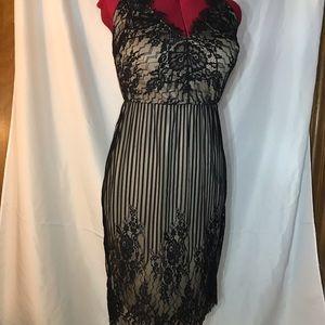 """Fashion to Figure"" lace dress"
